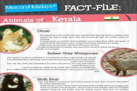 Animals of Kerala fact file