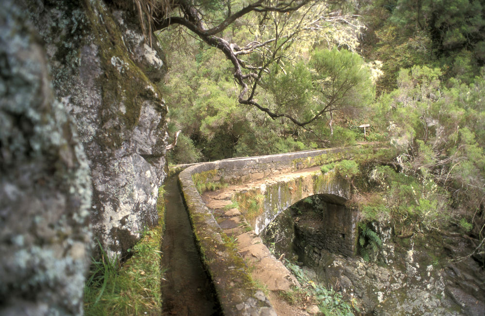 Top walks in Madeira