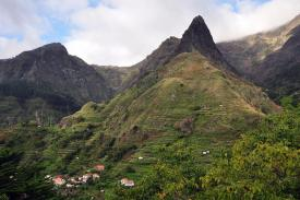 The history of Madeira