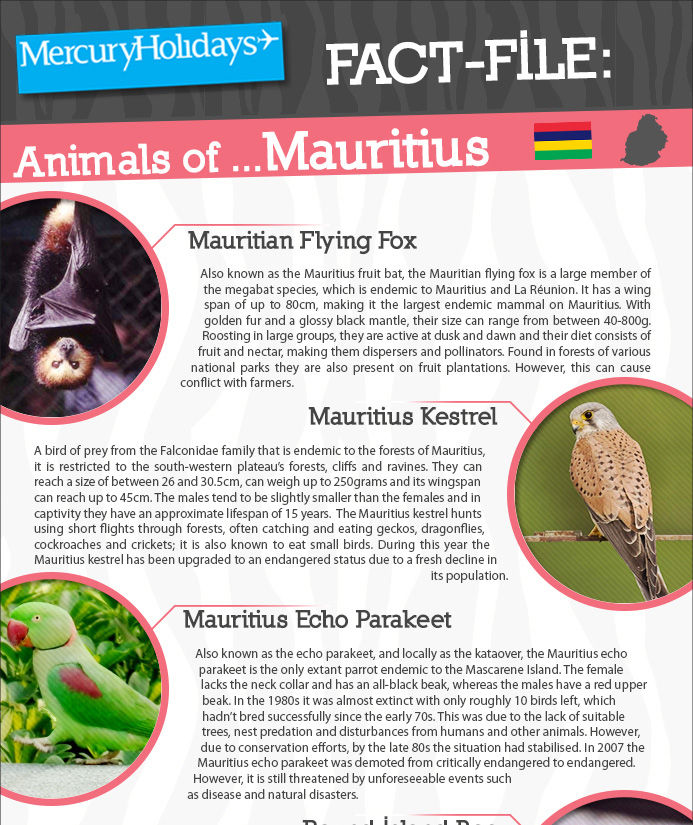 Animals of Mauritius - a fact file