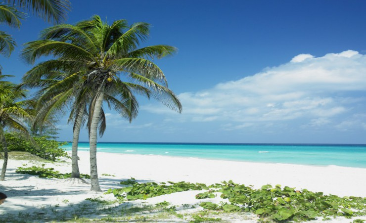 """White Sandy Beach In Varadero"""