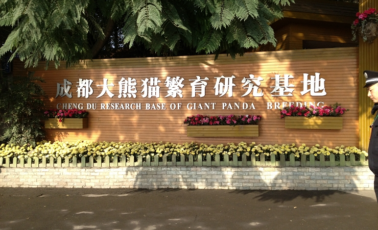 """Panda Breeding Centre"""