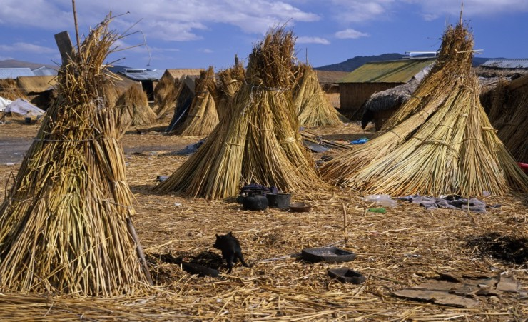 """Man-made Reed Island, Lake Titicaca"""