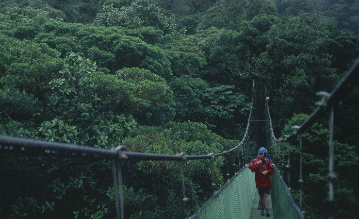 """Skywalk Monteverde Cloud Forest"""