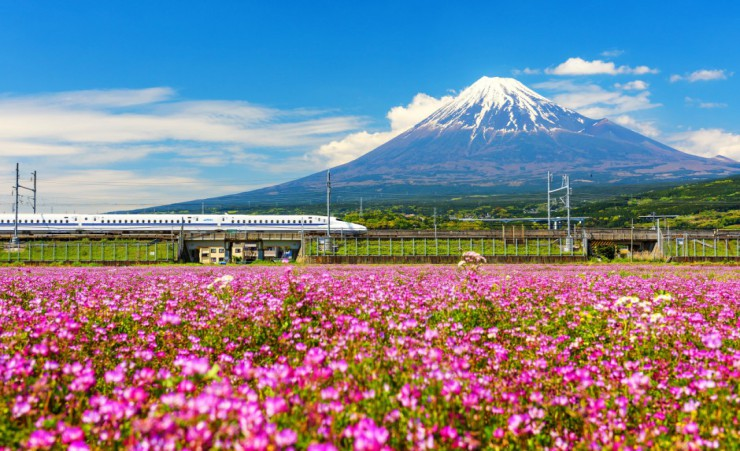 """Shinkansen With Mount Fuji"""