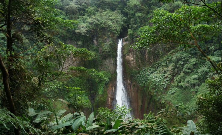 """La Fortuna Waterfall"""