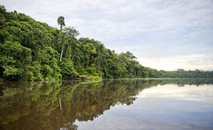 """Tambopata National Reserve"""