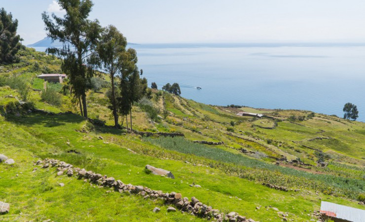 """View Of Lake Titicaca From Puno"""