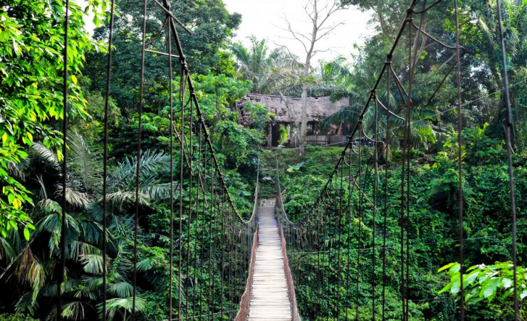 """Suspension Bridge At Tangkahan"""