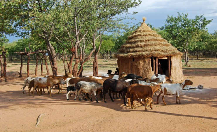 """Himba Village Near Etosha National Park"""
