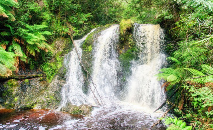 """St Clair Waterfall   Nuwara Eliya"""