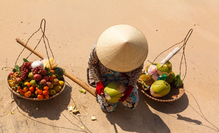 """Vietnamese Conical Hat"""