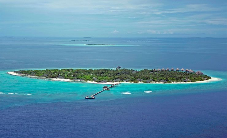 Meedhupparu Island Resort Tripadvisor