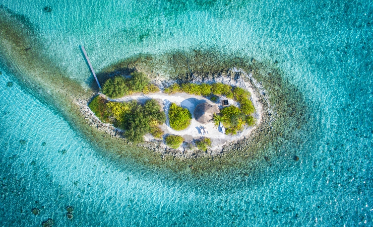 Bird Island For Honeymoons